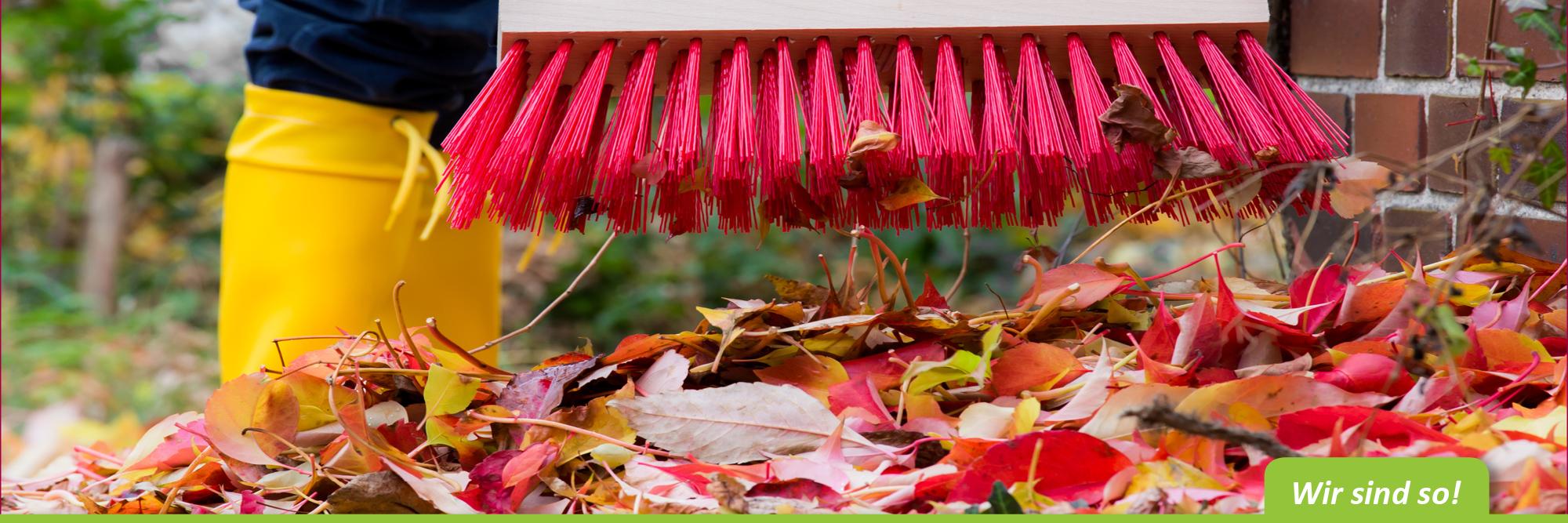 Laub entsorgen im Herbst – flotte-eifel-besen.de